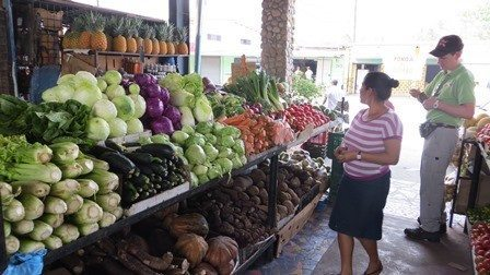 Farmer's Market in Panama
